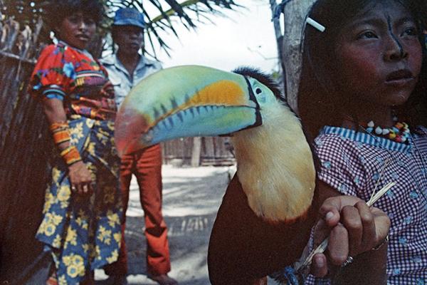 Toucan girls